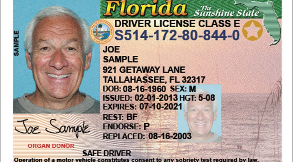 She Florida License – Snaps Driver
